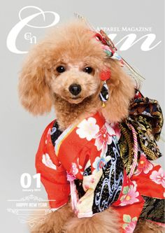Cuun -Luxury Dog Apparel Magazine- 2014