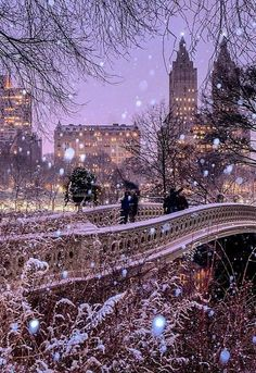 Bow Bridge in Central Park - New York City Winter   by matthewchimeraphotography