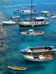 Tremiti Islands, Province of Foggia , Puglia region Italy