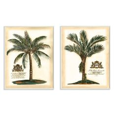 Stupell 'British Colonial Palms' Lithographic Wall Plaque Art