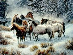 Snow herd - 3D and CG Wallpaper ID 1333323 - Desktop Nexus Abstract