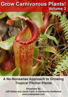 Grow Carnivorous Plants Volume 2