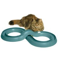 Ok we had the simple circle toy the dogs and the cats just adored! but THIS is the race car version! OH MY!! but no place to put the cat nip...