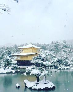 "986 Likes, 25 Comments - Rafael Becks - Japon And More (@japonandmore) on Instagram: ""#kinkakuji #kinkakujitemple #kyoto #snow #japan #japonandmore #winter #invierno #nieve #slowmotion…"""