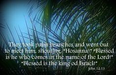 Beyond The Picket Fence: Sunday Verses ~ John 12:13