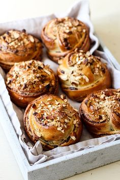 The Spoon and Whisk: Chocolate, Tahini & Honey Cashew Babka Buns Just Desserts, Delicious Desserts, Dessert Recipes, Babka Recipe, Tahini, Tray Bakes, Baked Goods, Sweet Recipes, Baking Recipes