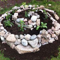 kräuterspirale stein- steine voller blüte backsteine glatte steine Kräuterspirale bauen