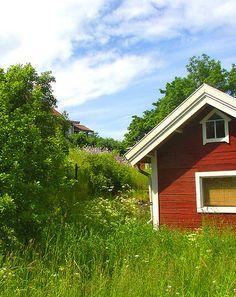 chasingthegreenfaerie:    Midsummer in the Stockholm Archipelago by Per Ola Wiberg ~ Powi on Flickr.