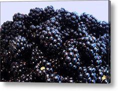 Blackberries Acrylic Print By Katica Vrhovac