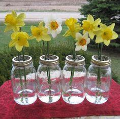 DIY Daffidols and mason jar centerpieces.