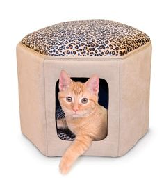 This Kitty Sleephouse™ Cat House is a cute way to give your cat a private place to sleep!