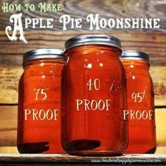 Apple Pie Moonshine recipe with proof. http://howtomakeapplepiemoonshine.com/