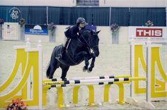 Miranda & rosso AT HORSESHOW