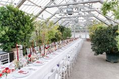 Gorgeous real wedding. Make your wedding stand out with an amazing and last forever red and gold color combos. Forever Red, Wedding Set Up, Vienna Austria, Color Combos, Planer, Real Weddings, Palm, Make It Yourself, Amazing