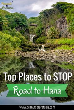 Ultimate Guide to the Road to Hana Stops - Peanuts or Pretzels
