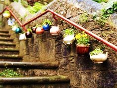 We love these teapot planters! #GoingGreen #Recycling #Eco #EcoFriendly #Upcycle