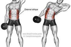 "Abdo : Illustration Description Exercice de flexion latérale des haltères ""Nothing will work unless you do"" !"