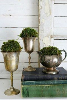 Using Greenery in Your Space. Vintage containers and moss. A creative way to decorate with silver! #NowAndAgain #Consignments