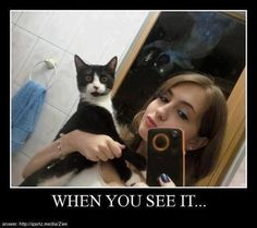 Image result for creepy animal memes
