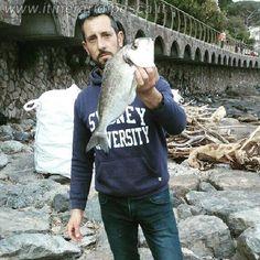 Alassio orata di oltre il kg con muriddu pesca fishing
