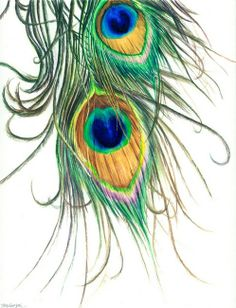 """""""Peacock Feathers"""" by Kelly Eddington, St. Joseph, IL // I painted these peacock feathers to decorate a wedding invitation for Lauri, a former student. This was the first time I'd used iridescent watercolors in a serious way. I received some for free a long time ago, but they seemed kind of gimmicky. However, these sparkly waterco... // Imagekind.com -- Buy stunning fine art prints, framed prints and canvas prints directly from independent working artists and photographers."""