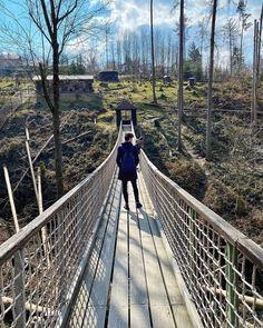 "Páči sa mi to: 13.8 tis., komentáre: 105 – (づ ◔ ͜ʖ ◔ )づ (@mattemwow) na Instagrame: ""Jak Shrek když zachraňoval Fionu"" Shrek, Brooklyn Bridge, Railroad Tracks, Travel, Instagram, Viajes, Traveling, Tourism, Outdoor Travel"