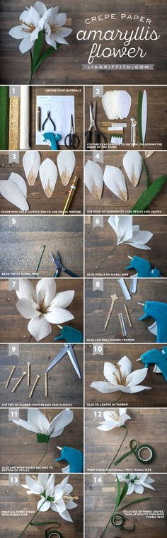 DIY Crepe Paper Amaryllis Yes! We're back with one of our favorite crafts – paper flowers. Our crepe paper amaryllis makes a nifty little h. Tissue Paper Flowers, Paper Roses, Felt Flowers, Diy Flowers, Fabric Flowers, Origami Flowers, Origami Butterfly, Paper Flower Ball, Paper Peonies