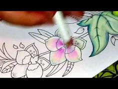Magical Jungle by Johanna Basford Part 2 of Page 1 Colouring Orchids - YouTube