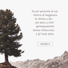 Se poi qualcuno di voi manca di saggezza, la chieda a Dio che dona a tutti generosamente senza rinfacciare, e gli sarà data.