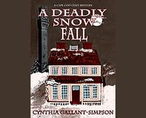 """The story begins when Bill Windship, a local businessman finds a body while shoveling the snow at the Pilgrim Monument and Museum in Provincetown, Cape Cod.    Continue reading on Examiner.com Curl up and read """"A Deadly Snow Fall"""" by Cynthia Gallant-Simpson - National Mystery Books 