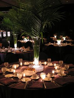Google Image Result for http://www.vibrantbride.com/images/photoalbum/38/Palm_Centerpieces.jpg