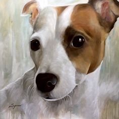 Mary's whimsical dog art is loved by fans around the world. Capturing the heart and soul of your four legged friends in an oil painting of your pet to treasure. Eye Painting, Painting People, Framed Prints, Canvas Prints, Jack Russell Terrier, Dog Portraits, Dog Art, Twinkle Twinkle, Mary