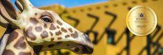 Varázslatos Bambara Hotel**** Felsőtárkány - Legjobb ajánlatok egy helyen