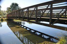 Pedestrian Bridge, Riverfront Park, Stayton Oregon Detroit Lakes, Pedestrian Bridge, State Art, Agriculture, Oregon, Display, River, Park, Places