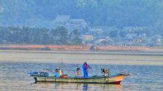 2015/04/25 6:15 早朝の博多湾で操業する漁船です。 Morning  at  Hakata bay in Japan