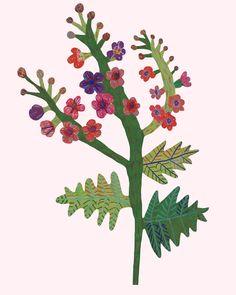 flowers - walkyland