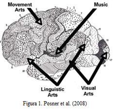 En esta imagen nos muestra la importancia que tiene la estimulación del cerebro en estas distintas áreas.