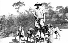 Breed's History - Malabo APD - Rhodesian Ridgeback - Malabo APD – Rhodesian Ridgeback