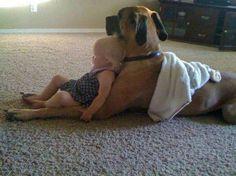 Mastiff Love! I hope you see this Rebecca!