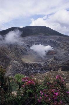 Costa Rica, Steam Rising Out of Active Crater In Poas Volcano (Caldera), Escolonia Flowers (Melastoma Taceae)