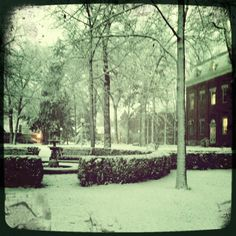 The fountain behind the Administration Building in a snow storm North Manchester, University Of Manchester, Striped Wedding, Diy Buttons, Pretty Images, Pre Raphaelite, Perfect Couple, Erotic Photography, Picture Quotes