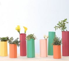 Project and Photos By: Victoria Hudgins  Take your planted herb mason jars that were trendy last year and give them a bright modern touch for spring with this super easy (and crazy inexpensive) paper vase project!        Materials:  To make these polygon vases you will need planted herbs and small vases of flowers + scrapbook paper. You will need one piece of 12x12 scrapbook paper for each vase you want to cover. Measure the height of your vase and cut the pap...