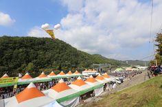 Hoengseong Hanu Festival (횡성한우축제), Korea   NonPeakTravel.com