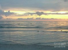"""""""Love Sign"""", a lucky shot in Clearwater Florida.  ♥"""