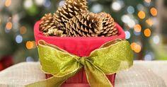 Como fazer pinhas se abrirem. Pinhas são um elemento natural maravilhoso para a decoração de Natal. Junto a ramos de sempre-vivas tornam-se centros de mesa encantadores e dão um toque de casa de campo a coroas e grinaldas. Elas podem ser recolhidas em estradas e terrenos baldios depois de caírem das árvores. Infelizmente, a maioria costuma estar fechada e não é adequada para ...