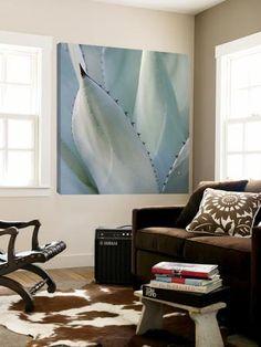 Black Tip Succulent Loft Art by Karen Ussery at Art.com