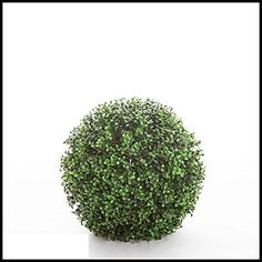 13 Inch Diameter,artificial, Ornamental Boxwood Sphere, Outdoor Rated -- Visit the image link more details.