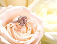 Life is Beautiful: Kaunein sormus ikinä Life Is Beautiful, Carrie, Sapphire, Wedding Rings, Engagement Rings, Jewelry, Instagram, Enagement Rings, Jewlery