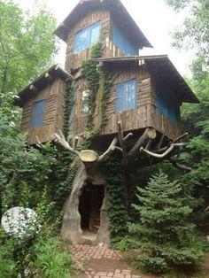 Epic treehouse