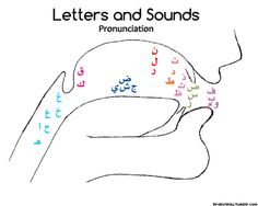 This drawing shows where the sounds should come out from when you pronounce the Arabic letters.